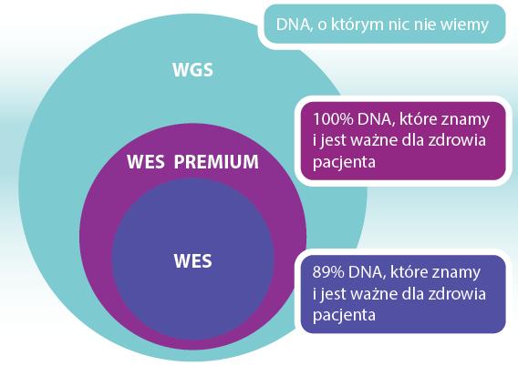 badanie WGS